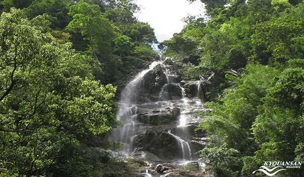 Vườn quốc gia Pù Mát