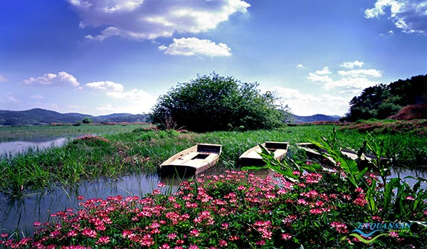 upo-wetland